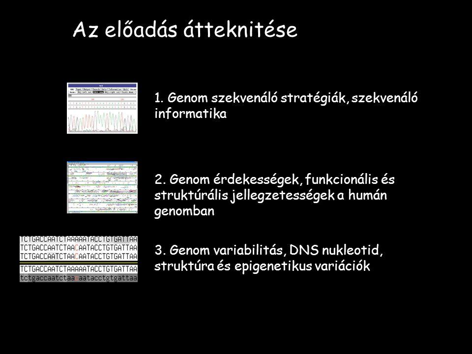Az előadás átteknitése 1. Genom szekvenáló stratégiák, szekvenáló informatika 2. Genom érdekességek, funkcionális és struktúrális jellegzetességek a h