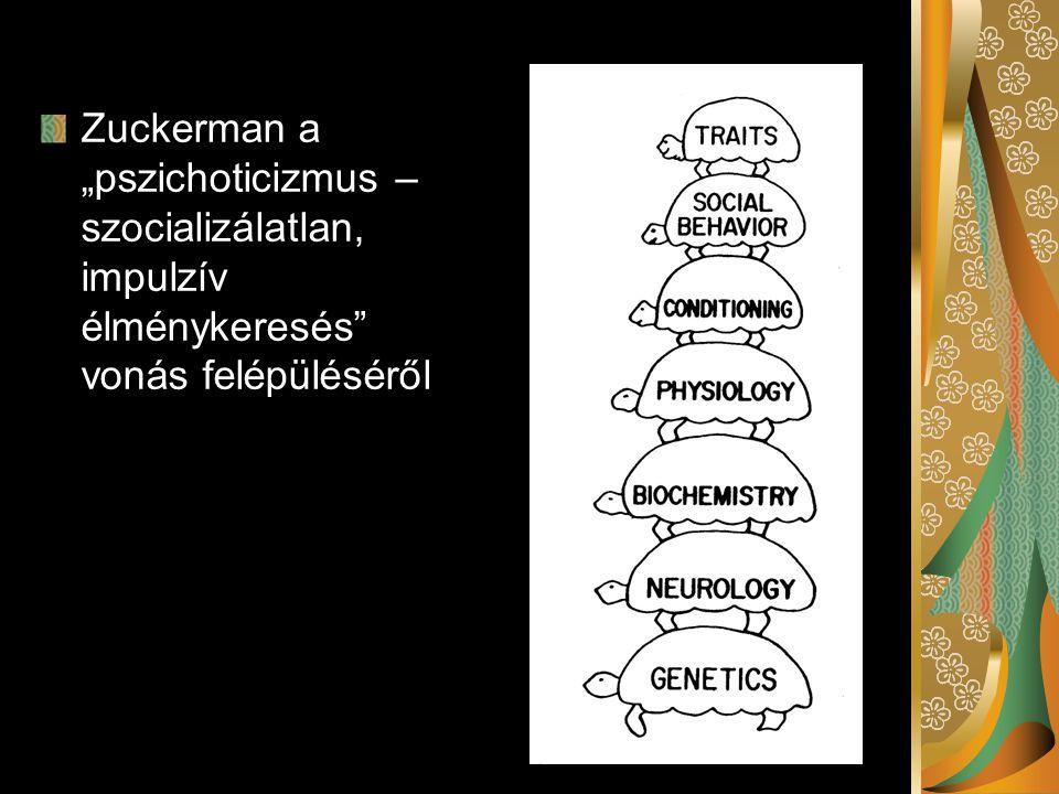 """Zuckerman a """"pszichoticizmus – szocializálatlan, impulzív élménykeresés"""" vonás felépüléséről"""
