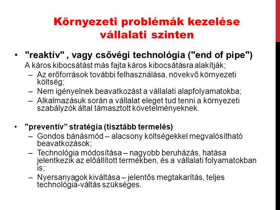 Környezeti problémák kezelése vállalati szinten