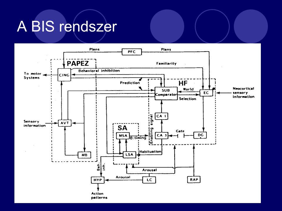 A BIS rendszer