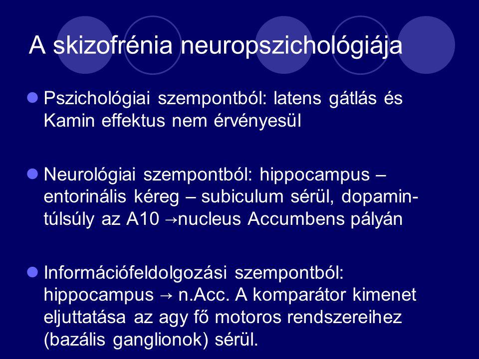 A skizofrénia neuropszichológiája Pszichológiai szempontból: latens gátlás és Kamin effektus nem érvényesül Neurológiai szempontból: hippocampus – entorinális kéreg – subiculum sérül, dopamin- túlsúly az A10 →nucleus Accumbens pályán Információfeldolgozási szempontból: hippocampus → n.Acc.