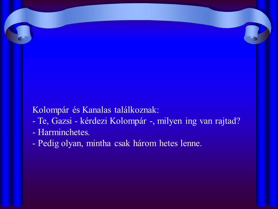 Kolompár és Kanalas találkoznak: - Te, Gazsi - kérdezi Kolompár -, milyen ing van rajtad.