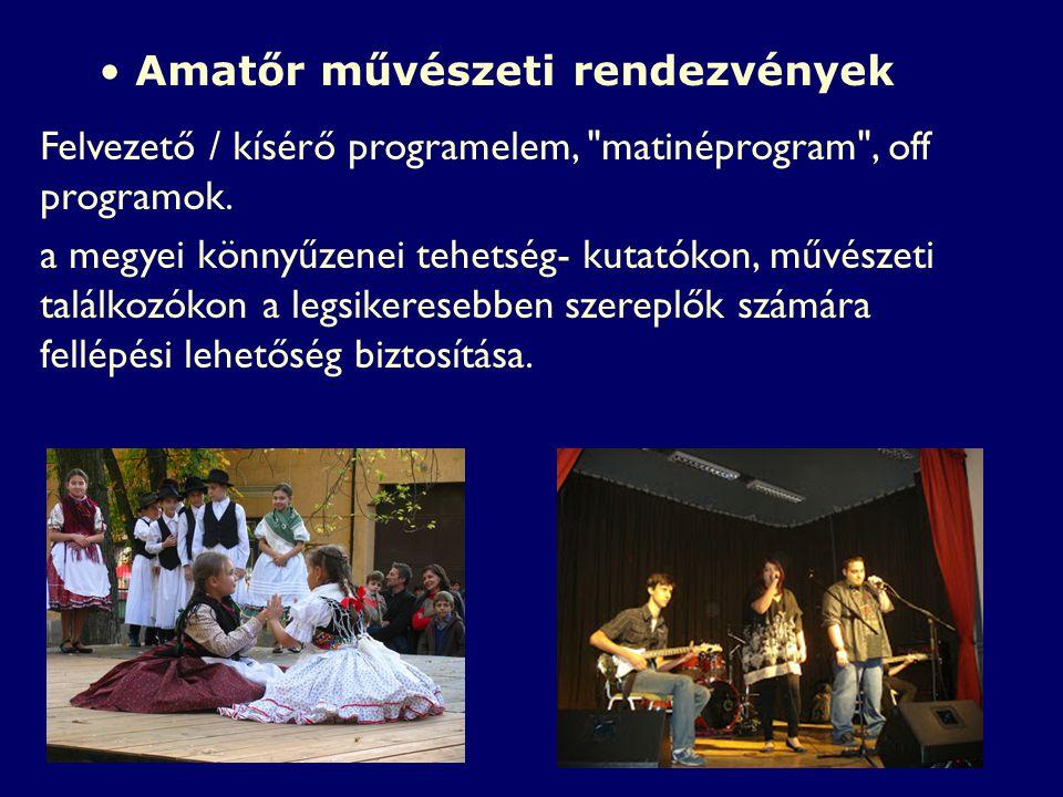 Amatőr művészeti rendezvények Felvezető / kísérő programelem, matinéprogram , off programok.