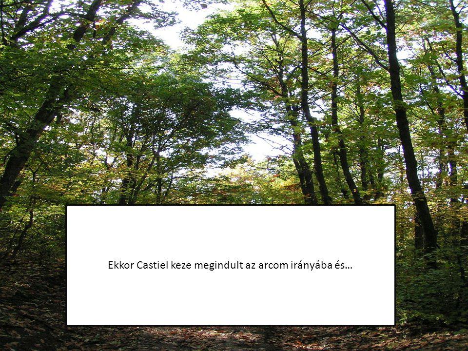 Ekkor Castiel keze megindult az arcom irányába és…