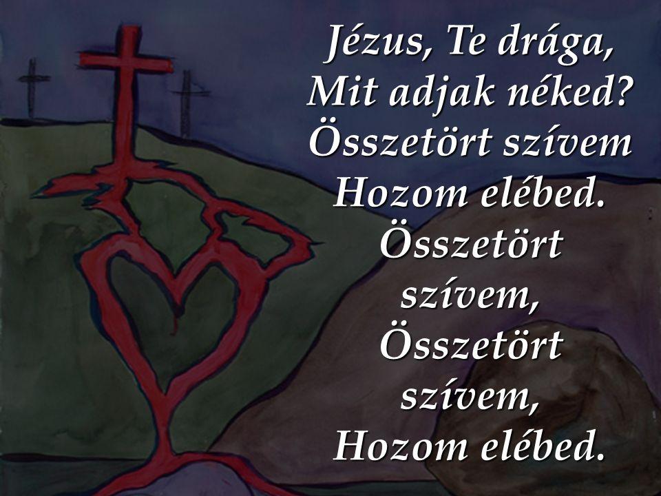 Jézus, Te drága, Mit adjak néked? Összetört szívem Hozom elébed. Összetört szívem, Hozom elébed.