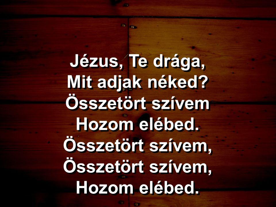 Jézus, Te drága, Mit adjak néked? Összetört szívem Hozom elébed. Összetört szívem, Hozom elébed. Jézus, Te drága, Mit adjak néked? Összetört szívem Ho