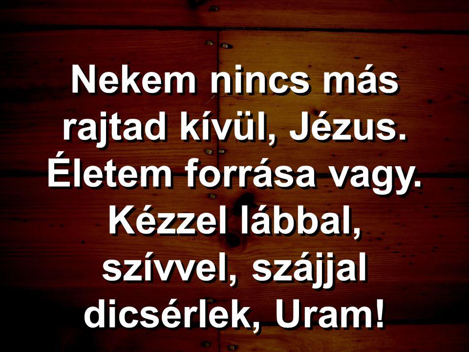 Nekem nincs más rajtad kívül, Jézus. Életem forrása vagy. Kézzel lábbal, szívvel, szájjal dicsérlek, Uram!