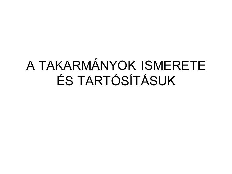 Szalmafélék II.