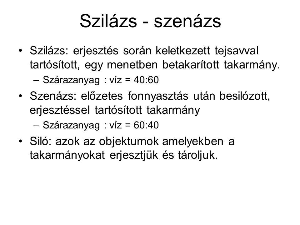 Szilázs - szenázs Szilázs: erjesztés során keletkezett tejsavval tartósított, egy menetben betakarított takarmány. –Szárazanyag : víz = 40:60 Szenázs: