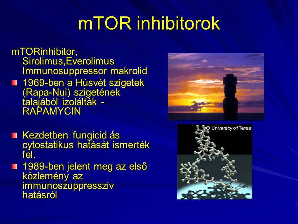mTOR inhibitorok mTORinhibitor, Sirolimus,Everolimus Immunosuppressor makrolid 1969-ben a Húsvét szigetek (Rapa-Nui) szigetének talajából izolálták -