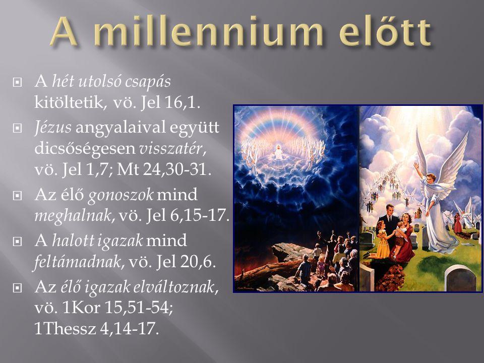  A hét utolsó csapás kitöltetik, vö. Jel 16,1.  Jézus angyalaival együtt dicsőségesen visszatér, vö. Jel 1,7; Mt 24,30-31.  Az élő gonoszok mind me