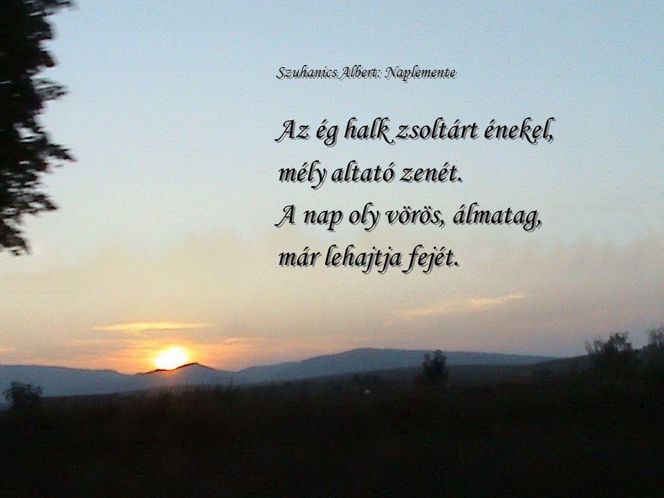 Látom ahogy a nap, Egyre lejjebb halad. Még utoljára megvilágítja a rétet, És az eget, azt a kéket… Látom ahogy a nap, Egyre lejjebb halad. Még utoljá