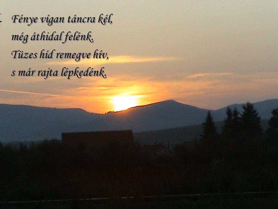 Szuhanics Albert: Naplemente Az ég halk zsoltárt énekel, mély altató zenét. A nap oly vörös, álmatag, már lehajtja fejét. Szuhanics Albert: Naplemente