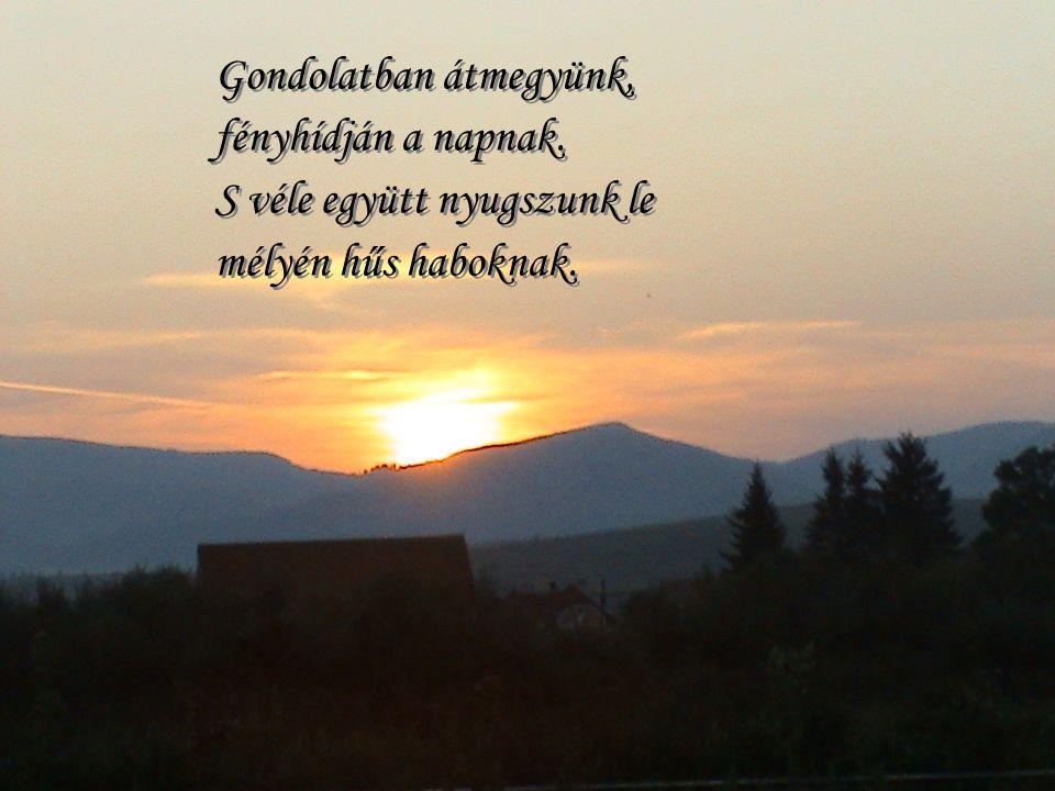 Gondolatban átmegyünk, fényhídján a napnak.S véle együtt nyugszunk le mélyén hűs haboknak.