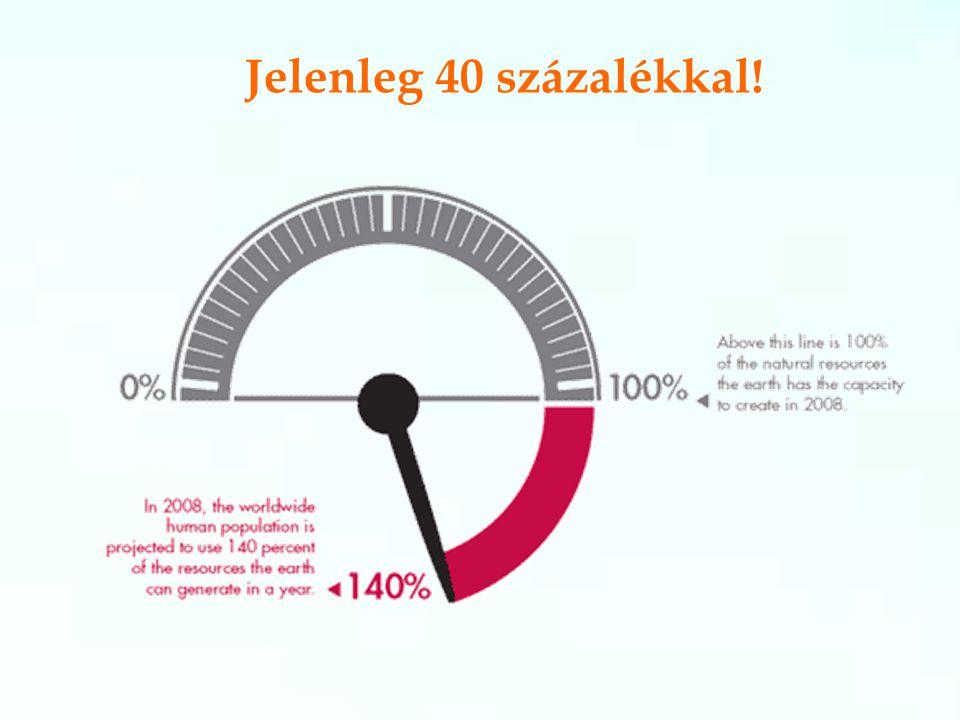 Jelenleg 40 százalékkal!