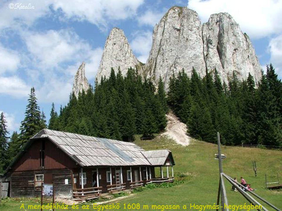 Székelykapu Torján - 15,06 m széles és 9,5 m magasságú
