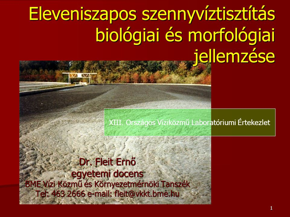 1 Eleveniszapos szennyvíztisztítás biológiai és morfológiai jellemzése Dr. Fleit Ernő egyetemi docens BME Vízi Közmű és Környezetmérnöki Tanszék Tel: