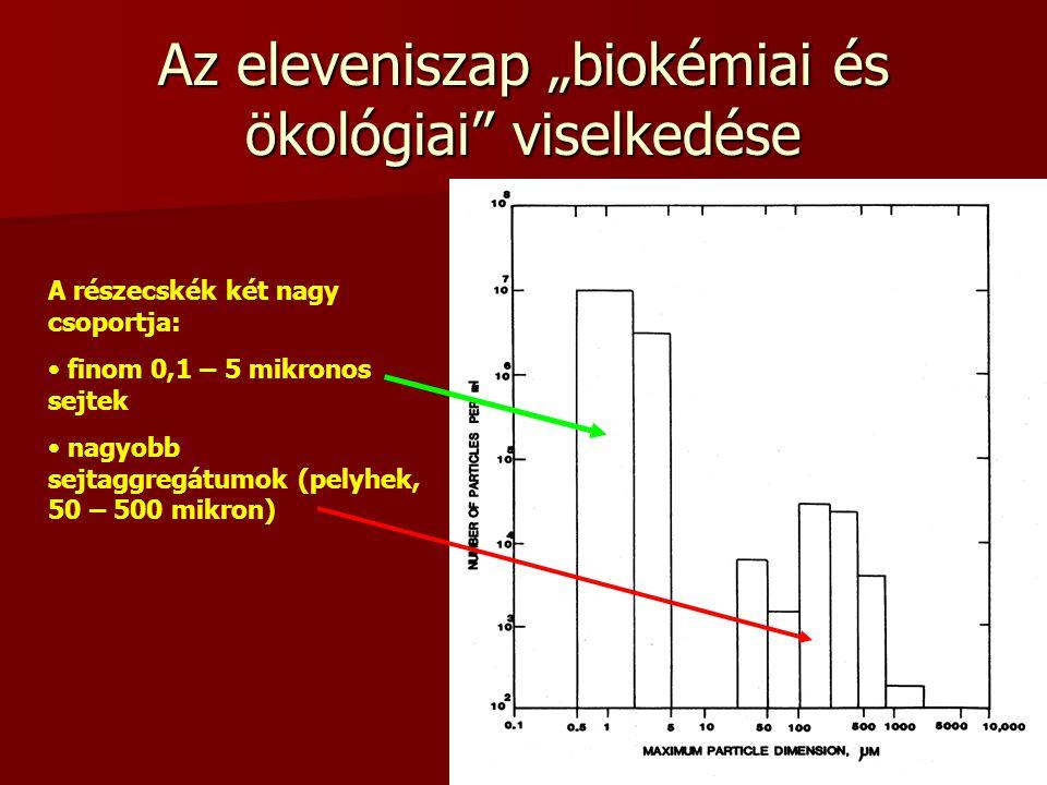 """11 Az eleveniszap """"biokémiai és ökológiai"""" viselkedése A részecskék két nagy csoportja: finom 0,1 – 5 mikronos sejtek nagyobb sejtaggregátumok (pelyhe"""