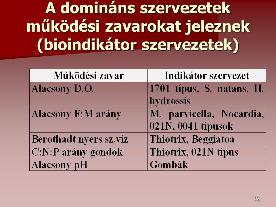 32 A domináns szervezetek működési zavarokat jeleznek (bioindikátor szervezetek)