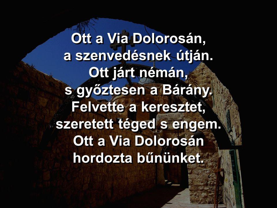 Ott a Via Dolorosán, a szenvedésnek útján.Ott járt némán, s győztesen a Bárány.