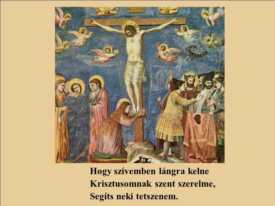 Szeretetnek szent kútfője, Add, a fájdalomnak tőre Járjon át a lelkemen.
