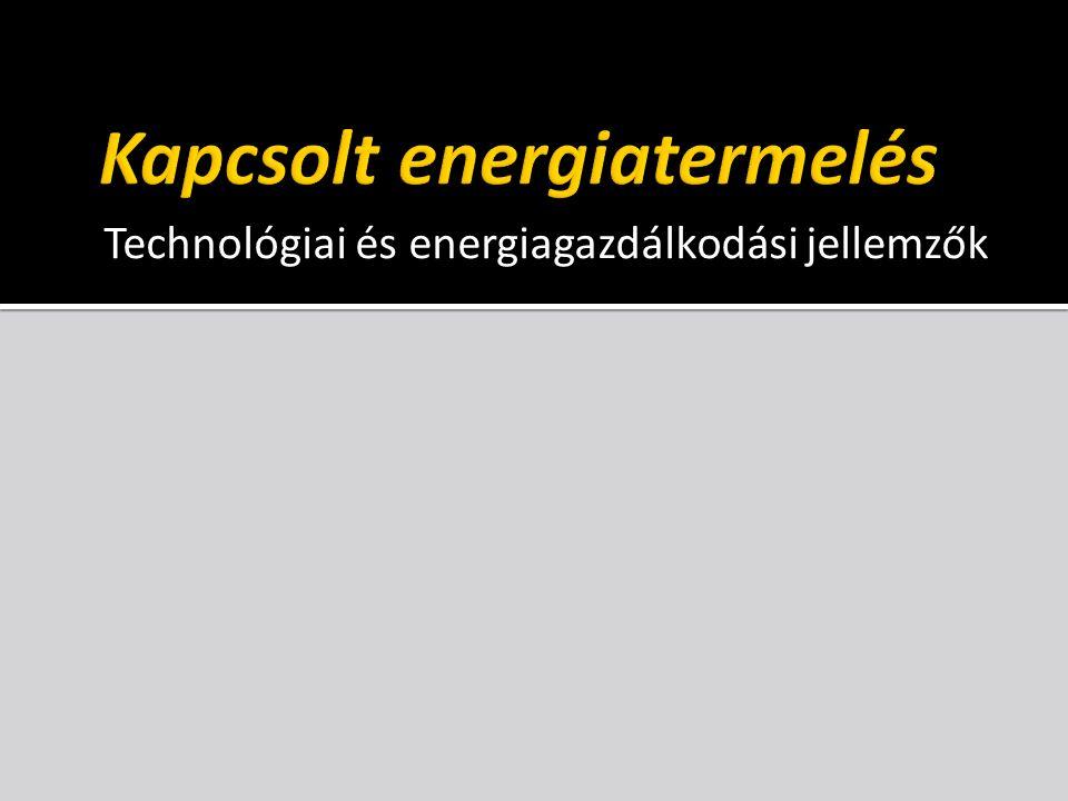 A kapcsolt energiatermelés technológiája ellennyomásúelvételes-kondenzációs