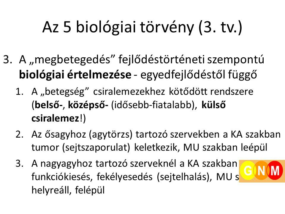 """Az 5 biológiai törvény (3. tv.) 3.A """"megbetegedés"""" fejlődéstörténeti szempontú biológiai értelmezése - egyedfejlődéstől függő 1.A """"betegség"""" csiraleme"""