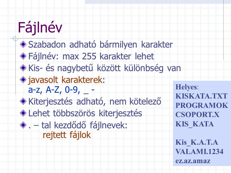 Fájlnév Szabadon adható bármilyen karakter Fájlnév: max 255 karakter lehet Kis- és nagybetű között különbség van javasolt karakterek: a-z, A-Z, 0-9, _