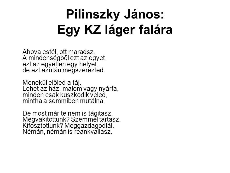 Pilinszky János: Egy KZ láger falára Ahova estél, ott maradsz. A mindenségből ezt az egyet, ezt az egyetlen egy helyet, de ezt azután megszerezted. Me