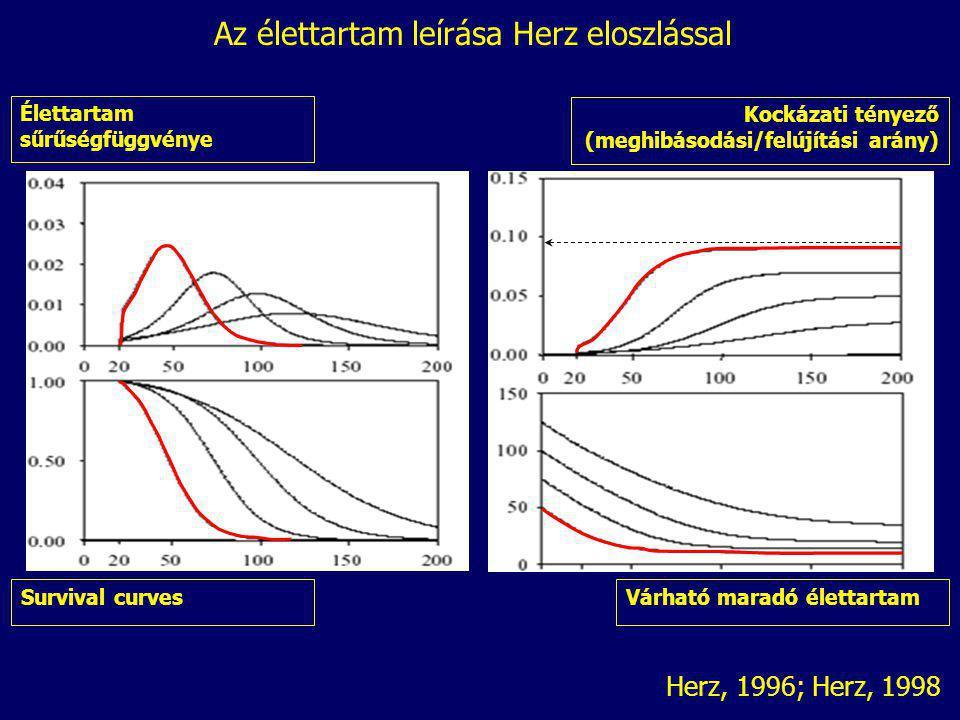 Élettartam sűrűségfüggvénye Survival curves Kockázati tényező (meghibásodási/felújítási arány) Várható maradó élettartam Herz, 1996; Herz, 1998 Az éle