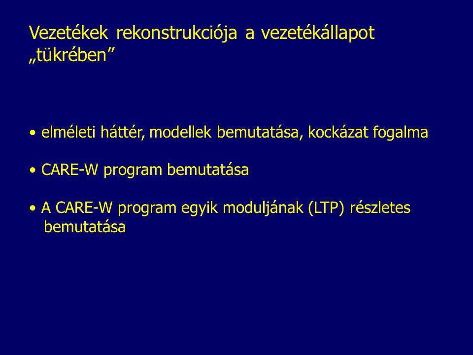 """Vezetékek rekonstrukciója a vezetékállapot """"tükrében elméleti háttér, modellek bemutatása, kockázat fogalma CARE-W program bemutatása A CARE-W program egyik moduljának (LTP) részletes bemutatása"""