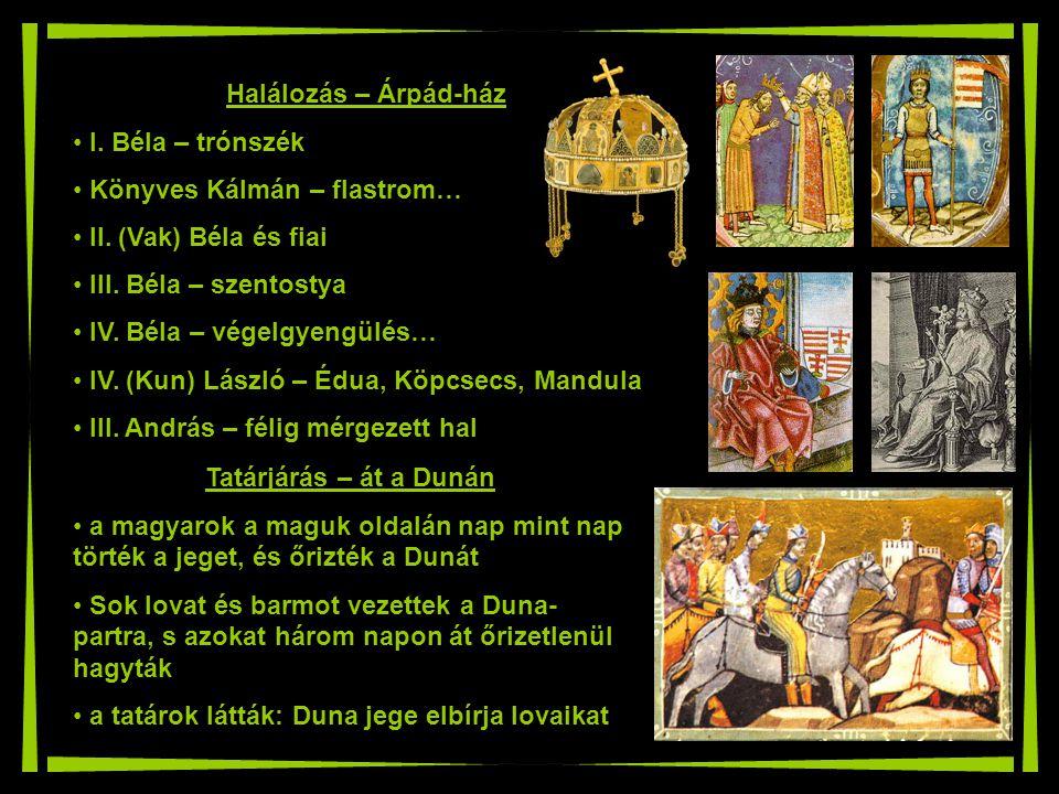 Tatárjárás – át a Dunán a magyarok a maguk oldalán nap mint nap törték a jeget, és őrizték a Dunát Sok lovat és barmot vezettek a Duna- partra, s azok