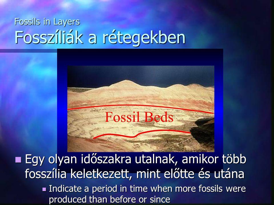 Fossils in Layers Fosszíliák a rétegekben Egy olyan időszakra utalnak, amikor több fosszília keletkezett, mint előtte és utána Egy olyan időszakra utalnak, amikor több fosszília keletkezett, mint előtte és utána Indicate a period in time when more fossils were produced than before or since Indicate a period in time when more fossils were produced than before or since