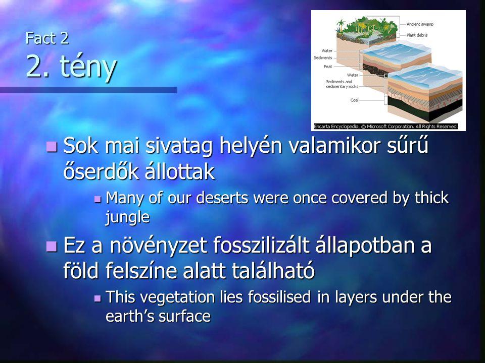 Fact 2 2. tény Sok mai sivatag helyén valamikor sűrű őserdők állottak Sok mai sivatag helyén valamikor sűrű őserdők állottak Many of our deserts were