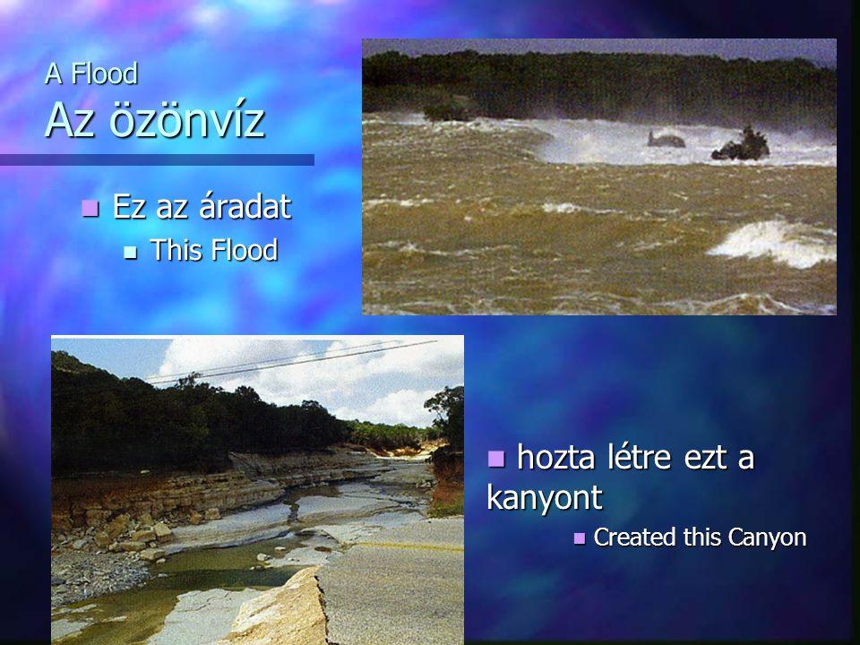 A Flood Az özönvíz Ez az áradat Ez az áradat This Flood This Flood hozta létre ezt a kanyont hozta létre ezt a kanyont Created this Canyon Created this Canyon