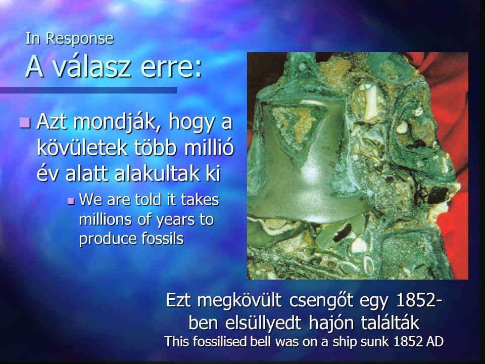 In Response A válasz erre: Azt mondják, hogy a kövületek több millió év alatt alakultak ki Azt mondják, hogy a kövületek több millió év alatt alakultak ki We are told it takes millions of years to produce fossils We are told it takes millions of years to produce fossils Ezt megkövült csengőt egy 1852- ben elsüllyedt hajón találták This fossilised bell was on a ship sunk 1852 AD
