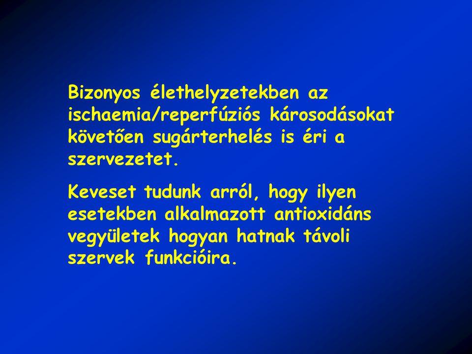 Bizonyos élethelyzetekben az ischaemia/reperfúziós károsodásokat követően sugárterhelés is éri a szervezetet.