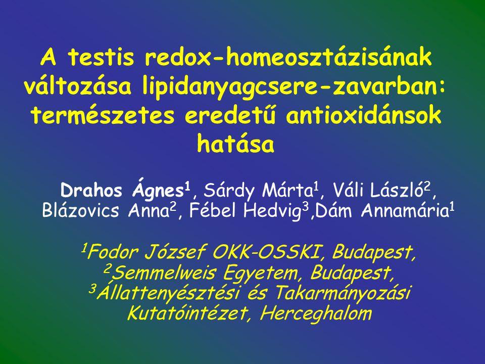 Flavonax 100 hatása a here antioxidáns státuszára hiperlipidémiás patkányban KAFAF