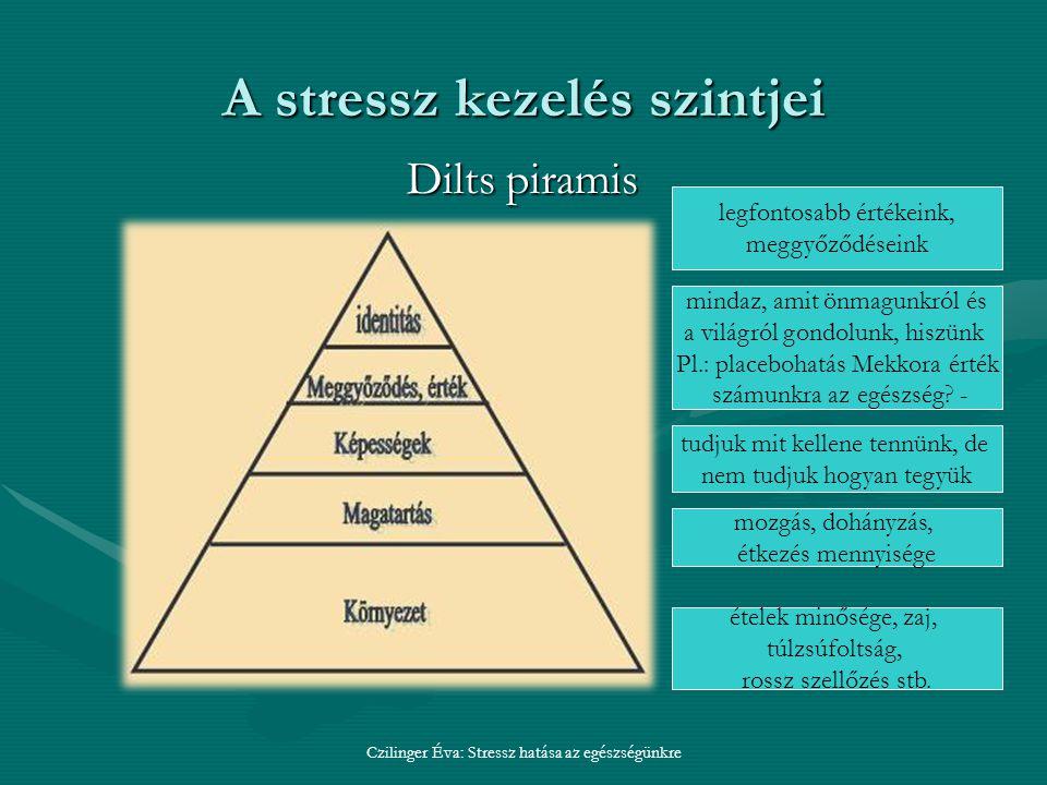 A stressz kezelés szintjei Czilinger Éva: Stressz hatása az egészségünkre Dilts piramis ételek minősége, zaj, túlzsúfoltság, rossz szellőzés stb.