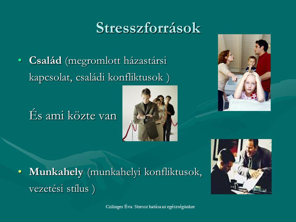 Stresszforrások Család (megromlott házastársiCsalád (megromlott házastársi kapcsolat, családi konfliktusok ) És ami közte van Munkahely (munkahelyi konfliktusok,Munkahely (munkahelyi konfliktusok, vezetési stílus ) Czilinger Éva: Stressz hatása az egészségünkre