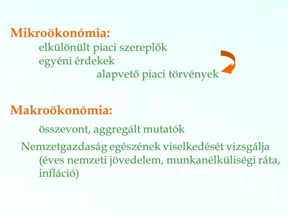 Mikroökonómia: elkülönült piaci szereplők egyéni érdekek alapvető piaci törvények Makroökonómia: összevont, aggregált mutatók Nemzetgazdaság egészének