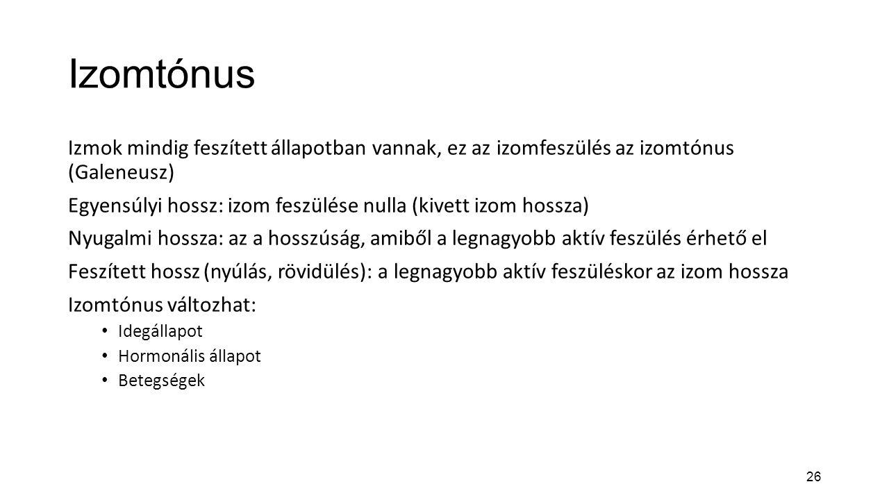 26 Izomtónus Izmok mindig feszített állapotban vannak, ez az izomfeszülés az izomtónus (Galeneusz) Egyensúlyi hossz: izom feszülése nulla (kivett izom