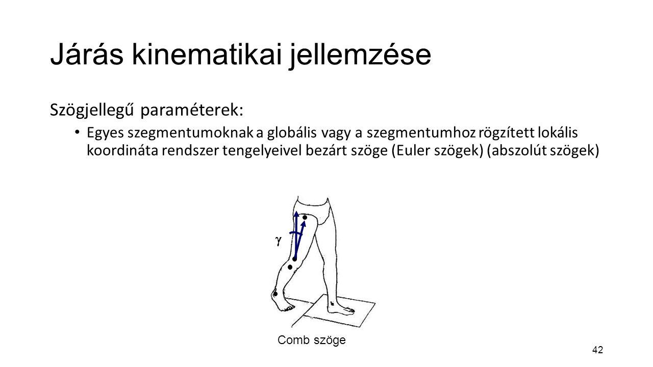 42 Járás kinematikai jellemzése Szögjellegű paraméterek: Egyes szegmentumoknak a globális vagy a szegmentumhoz rögzített lokális koordináta rendszer t
