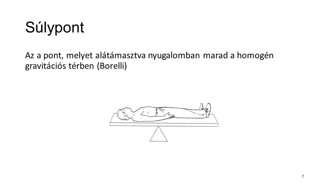 7 Súlypont Az a pont, melyet alátámasztva nyugalomban marad a homogén gravitációs térben (Borelli)
