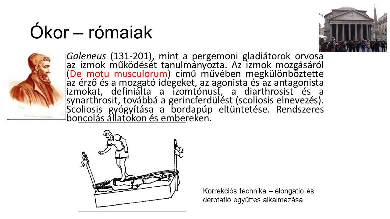 Ókor – rómaiak Galeneus (131-201), mint a pergemoni gladiátorok orvosa az izmok működését tanulmányozta. Az izmok mozgásáról (De motu musculorum) című