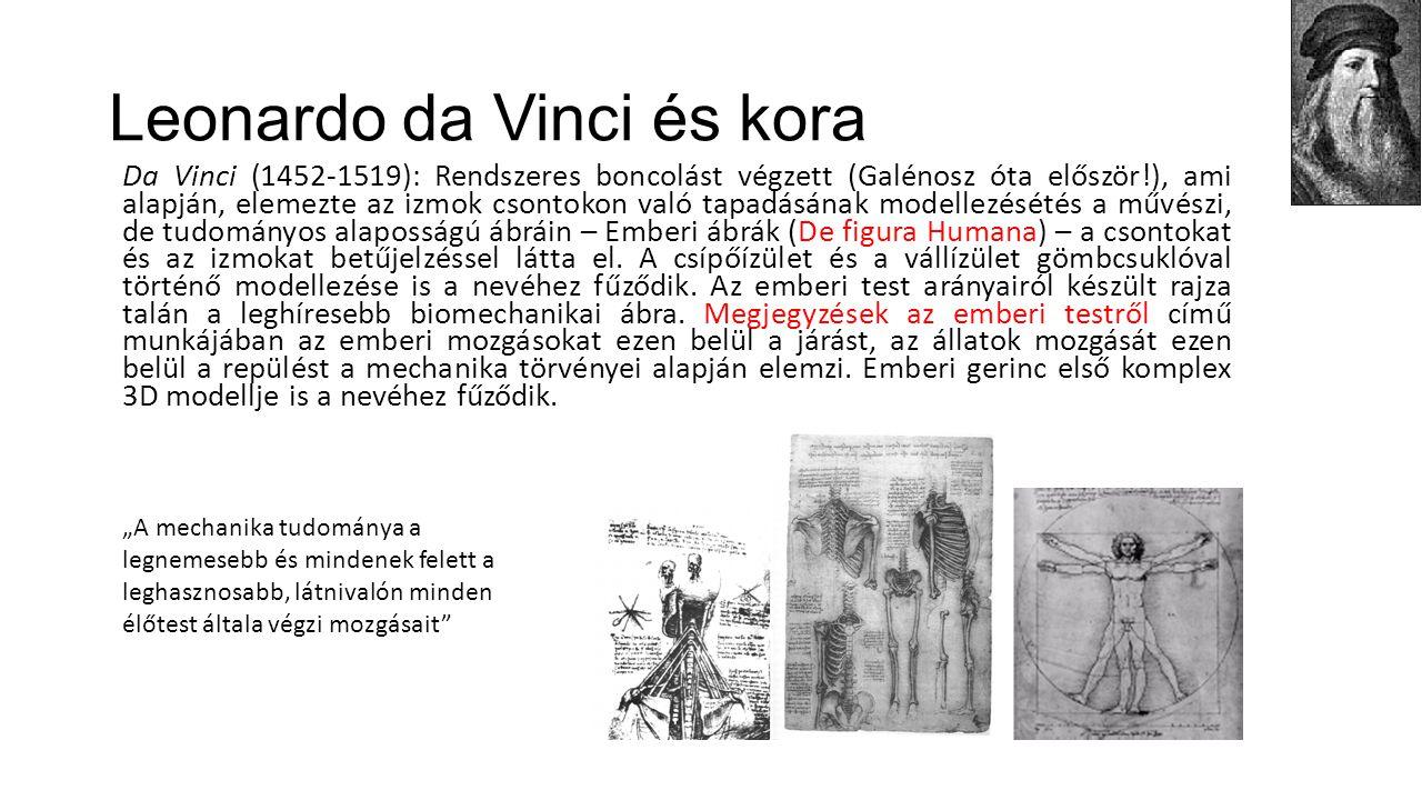 Leonardo da Vinci és kora Da Vinci (1452-1519): Rendszeres boncolást végzett (Galénosz óta először!), ami alapján, elemezte az izmok csontokon való ta