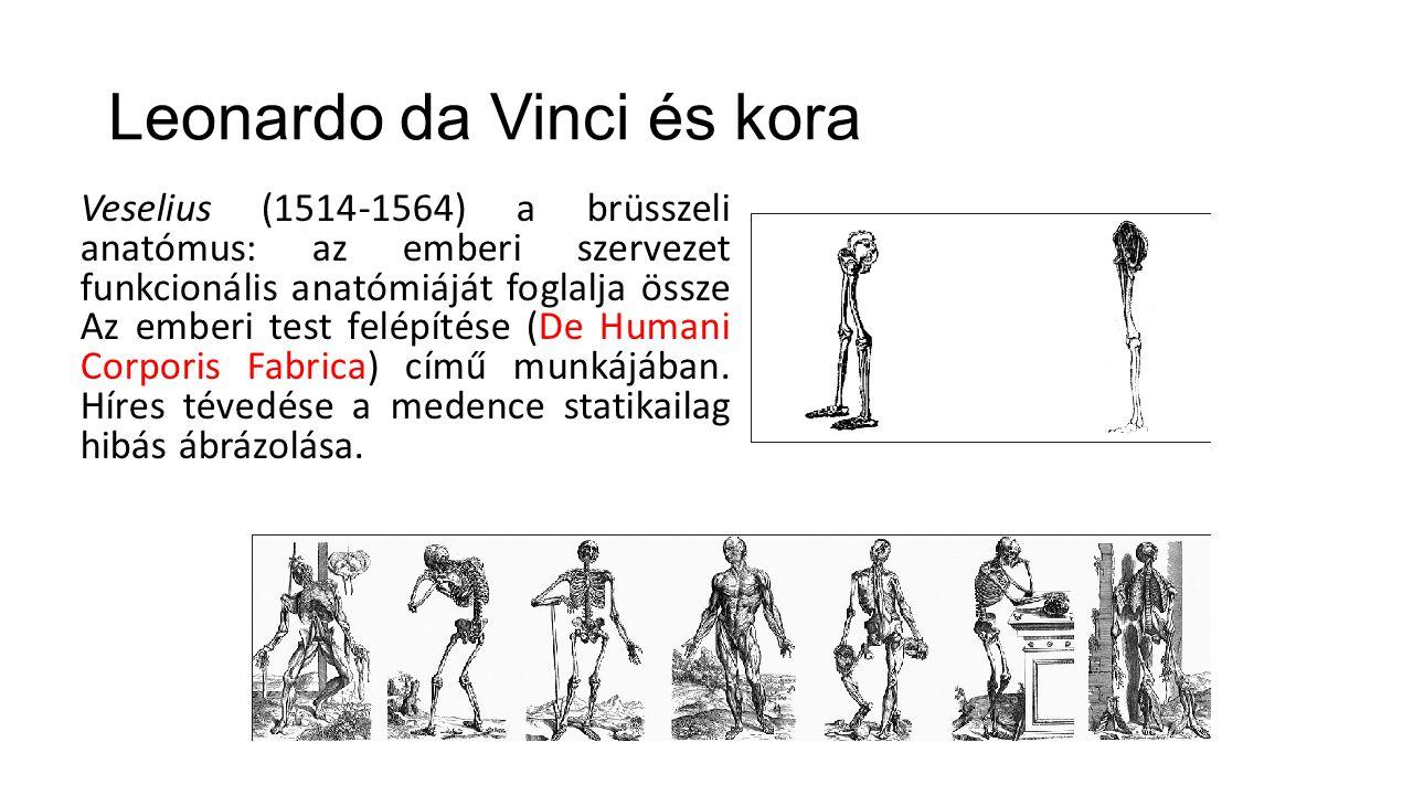 Veselius (1514-1564) a brüsszeli anatómus: az emberi szervezet funkcionális anatómiáját foglalja össze Az emberi test felépítése (De Humani Corporis F