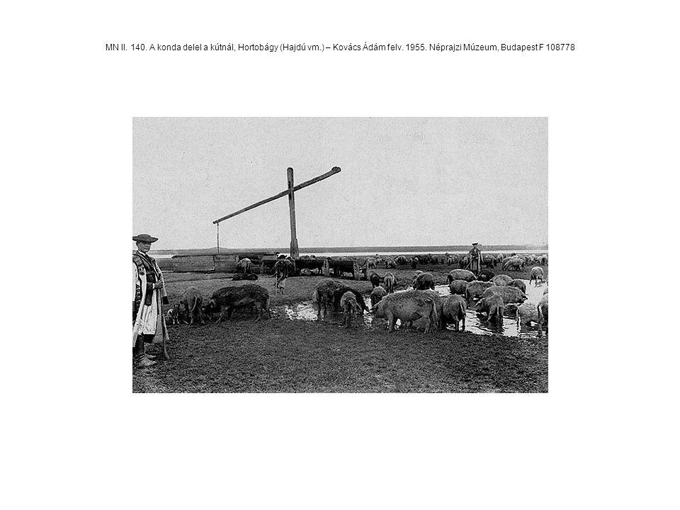 MN II. 140. A konda delel a kútnál, Hortobágy (Hajdú vm.) – Kovács Ádám felv. 1955. Néprajzi Múzeum, Budapest F 108778