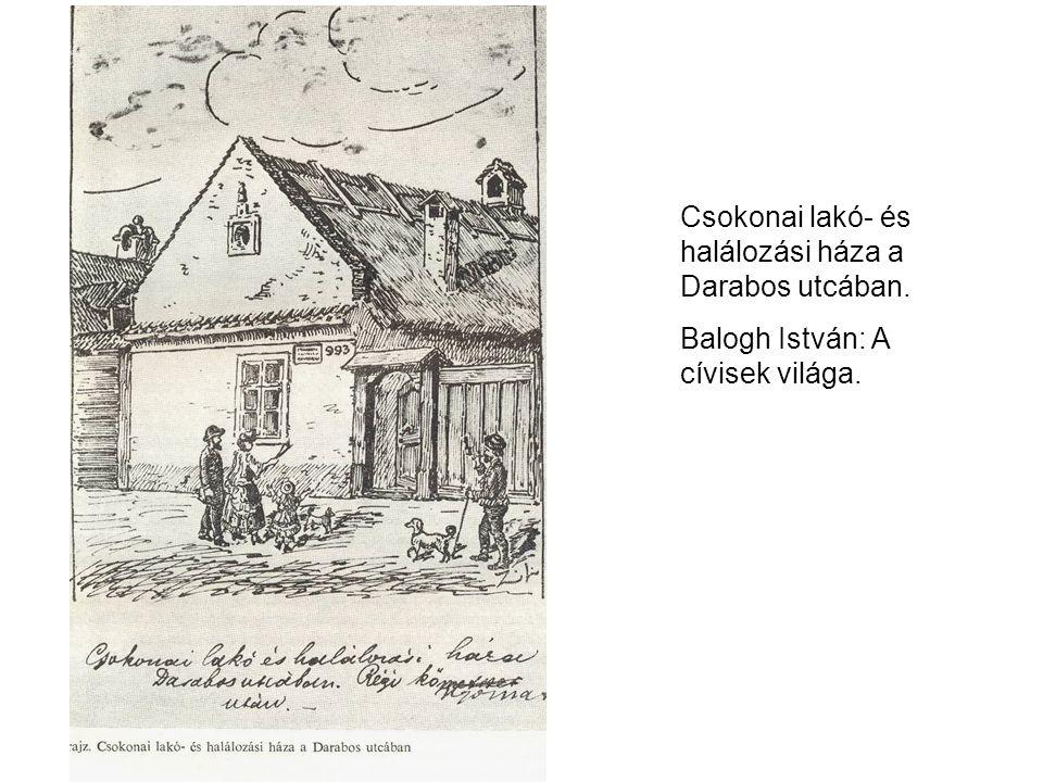 Csokonai lakó- és halálozási háza a Darabos utcában. Balogh István: A cívisek világa.
