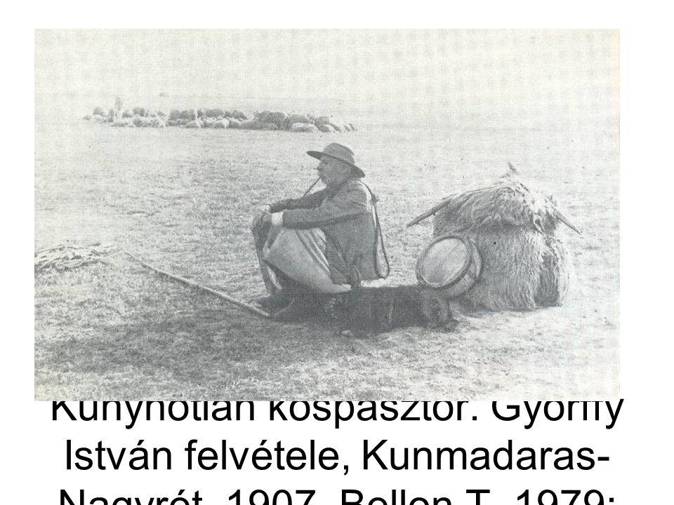 Kunyhótlan kospásztor. Györffy István felvétele, Kunmadaras- Nagyrét, 1907. Bellon T. 1979: